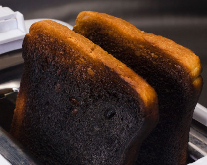 Two pieces of burnt toast.