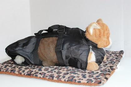 A stuffed cat emerging from a bag.